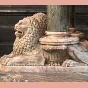 lions5.jpg