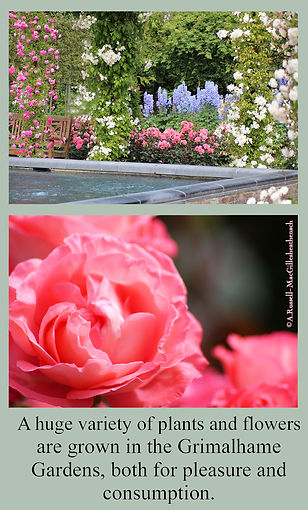 gardens6.jpg