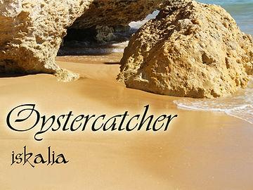 Oystercatcher Title.jpg