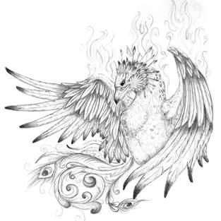 Firebird.jpg
