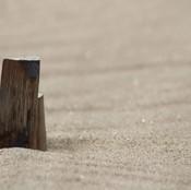 dunes6.jpg