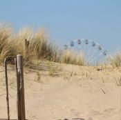dunes8.jpg