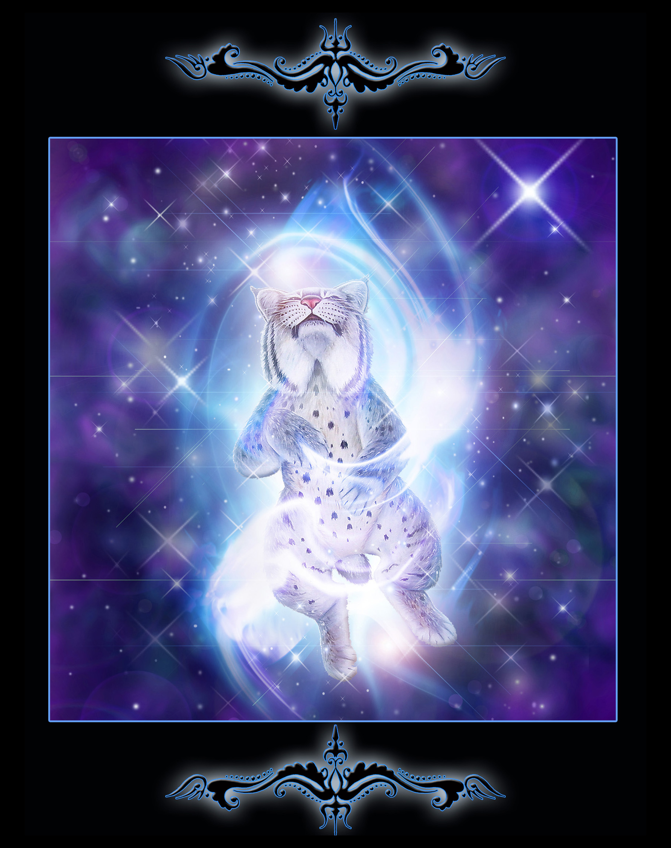 Astral Cat 4