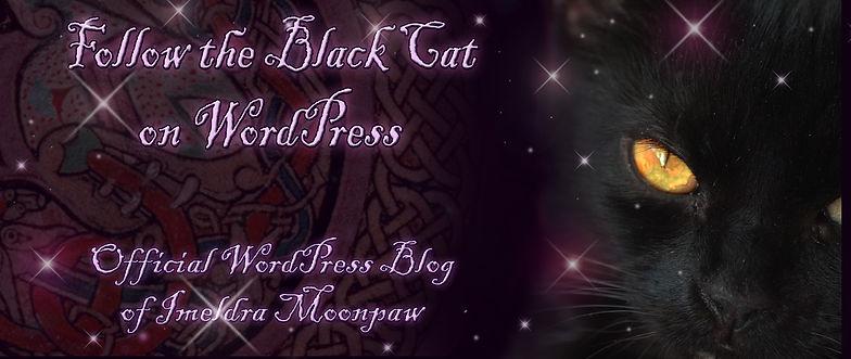 Black Cat Button.jpg