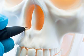 doctor-showing-patient-bone-anatomy-skel