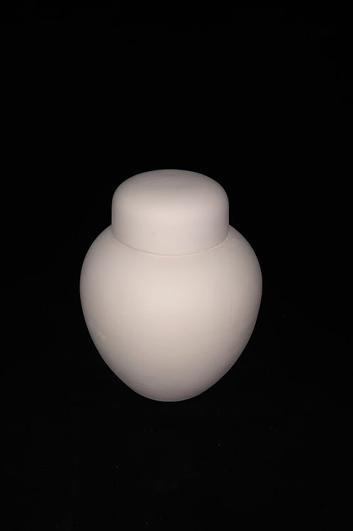 Large Ginger Jar