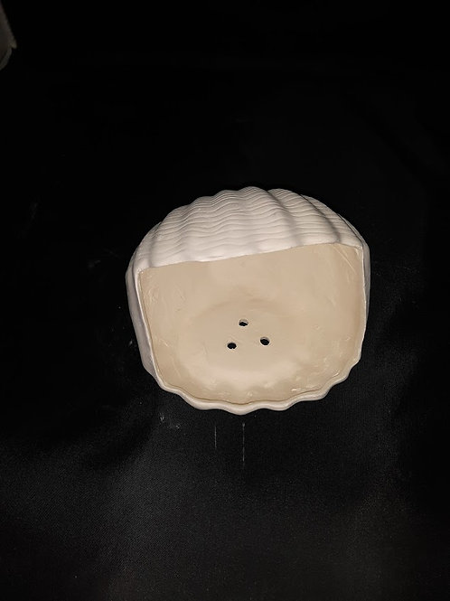 Shell Soap Bowl