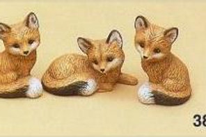 Riverview Small Foxes