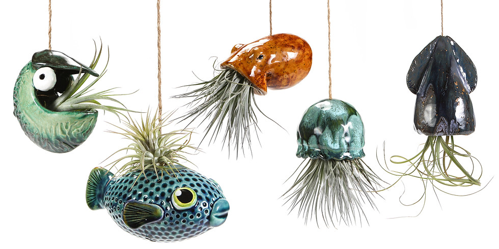 Summer Camp Grades 6-12: Sea Life Planters (x5)