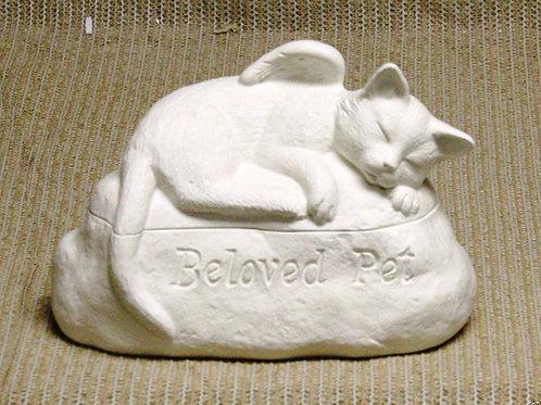 Beloved Pet Cat
