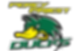 ducks_300_logo.png