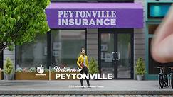 Mill_Nationwide_Insurance_still01.jpg
