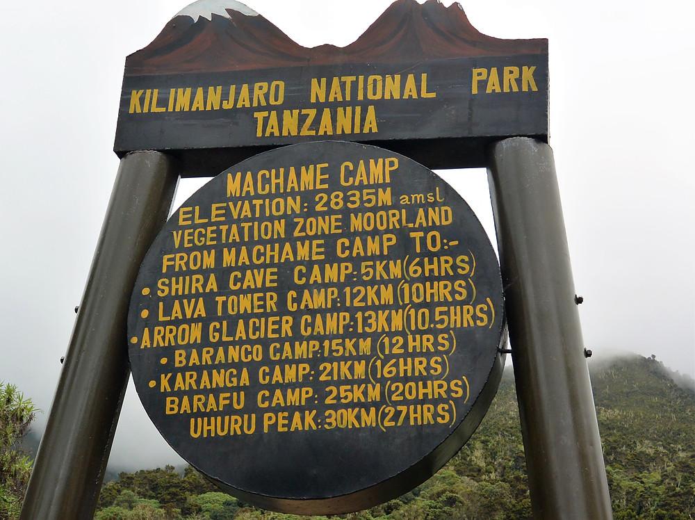 Machame Camp på väg uppför Kilimanjaro, Tanzania