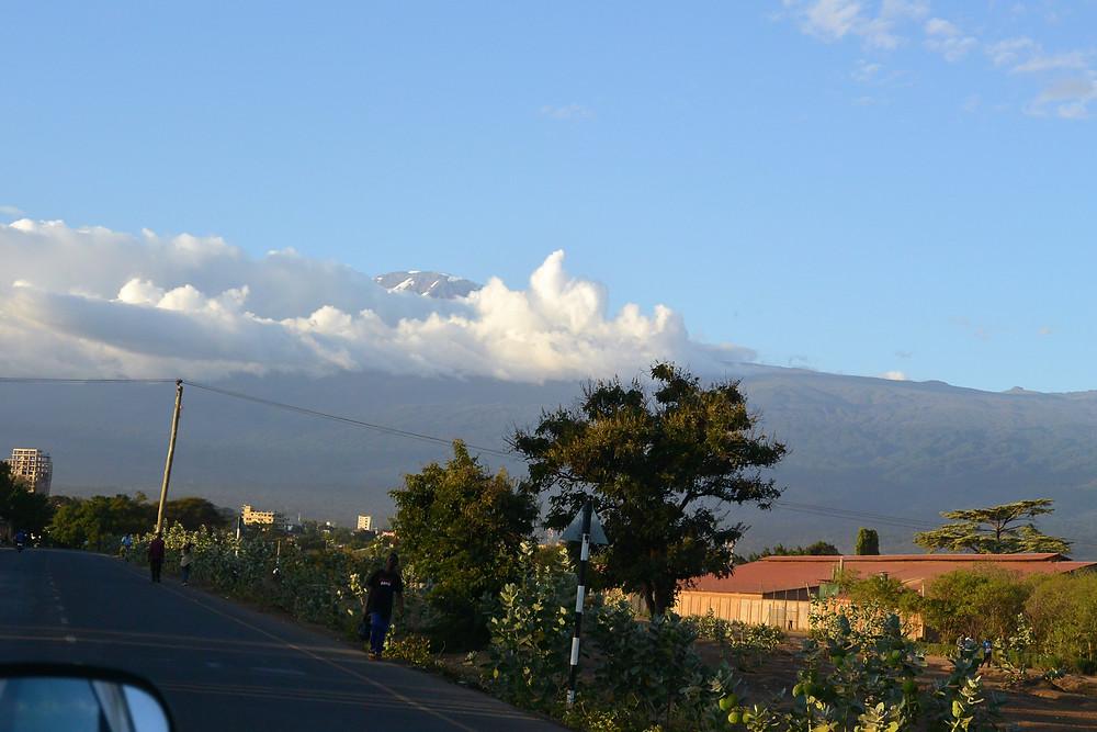 Kilimanjaro i bakgrunden på väg till flygplatsen.
