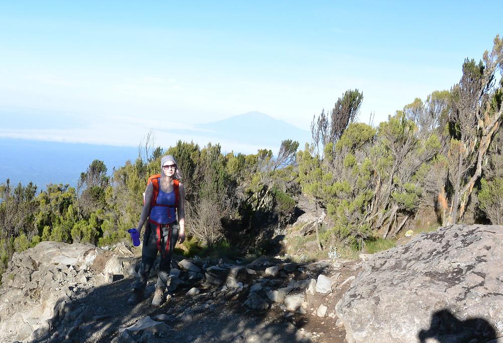 Livet återvänder till kroppen på väg nedför berget, Kilimanjaro, Tanzania.