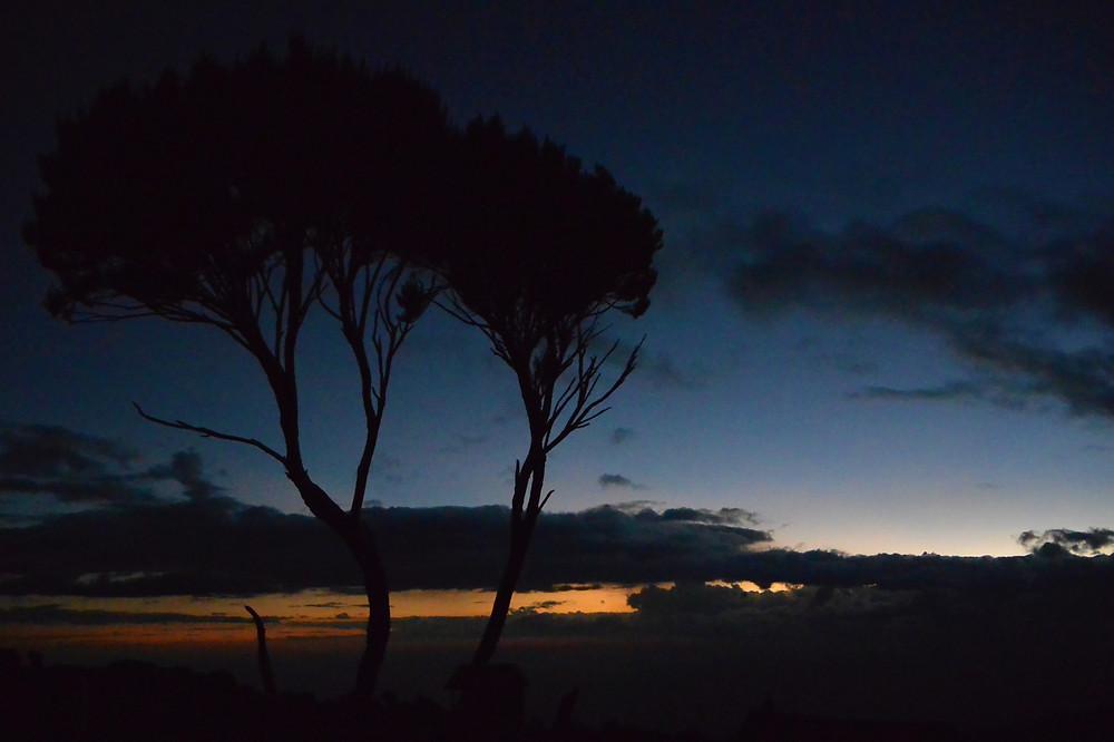 fantastisk vacker solnedgång över Shira Camp, Kilimanjaro, Tanzania.