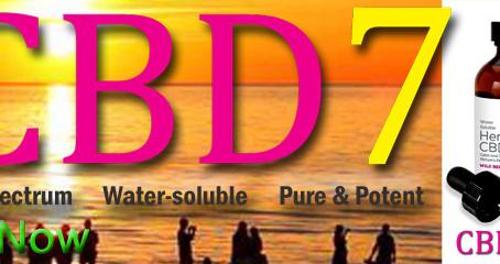CBD7 Quick FAQs