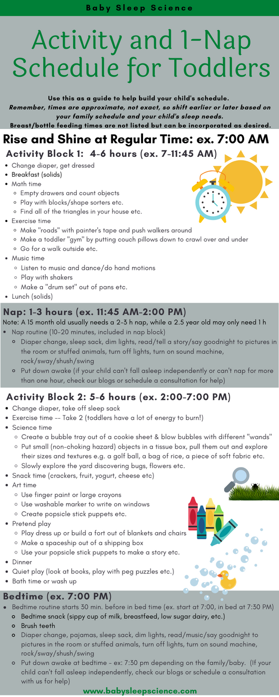 Activity and 1-Nap Schedule for Toddlers 12-36+ Months