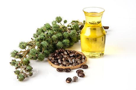 Castor Oil.jpg