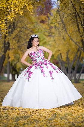 Rose Embroidered Quince Dress