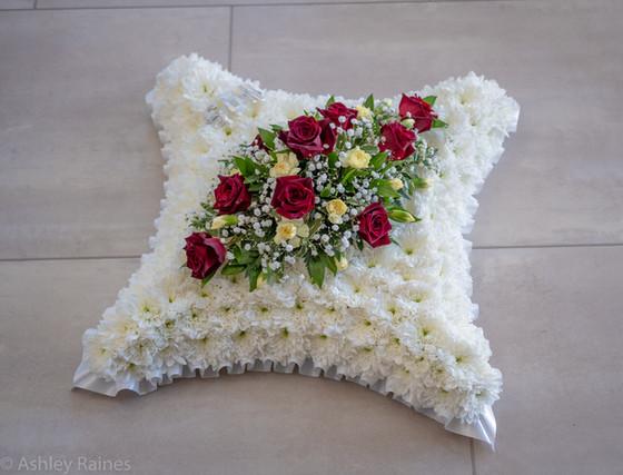 "18"" Based Cushion"