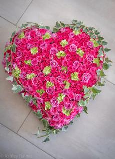 "17"" Pink Rose Heart"