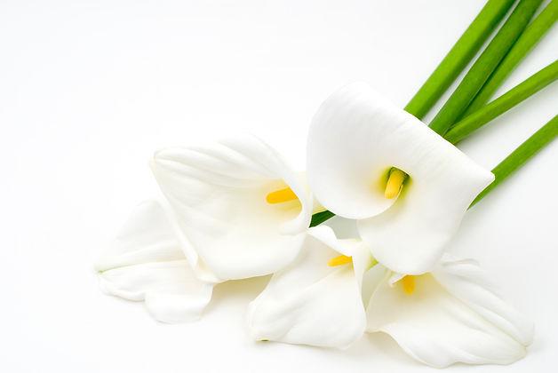 The Flower House Florist in Aylesbury Funeral Flowers