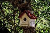 birdhouse-4018798__340.jpg