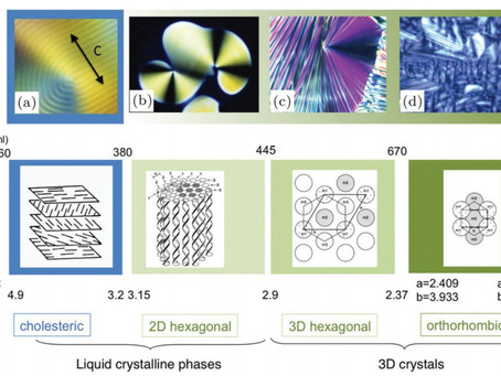 Cholesteric Liquid Crystals as Receptors for Consciousness in Living Matter