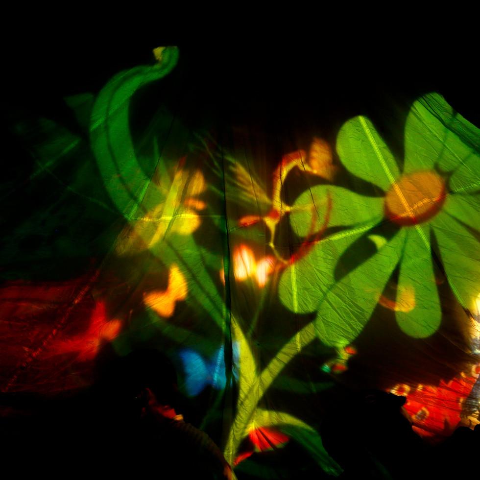 Butterfly Ball 93.jpg