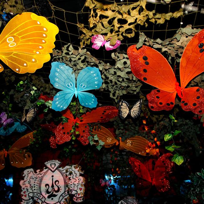 Butterfly Ball 152.jpg
