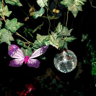 Butterfly Ball 147.jpg