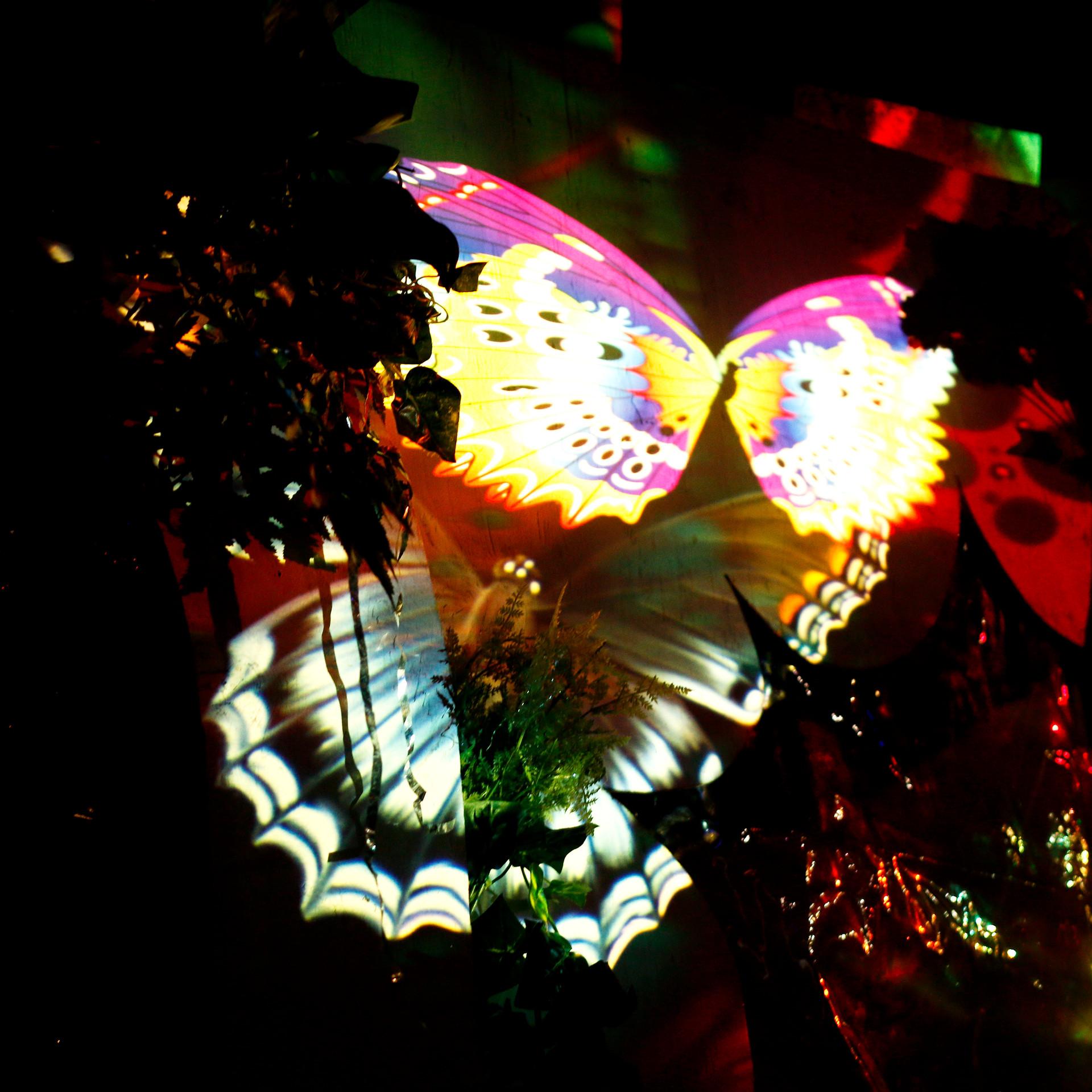 Butterfly Ball 149.jpg