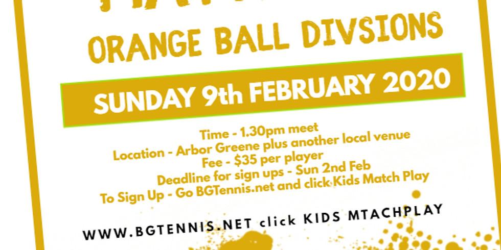 Orange Ball - February 9th (Deadline Feb 2nd)