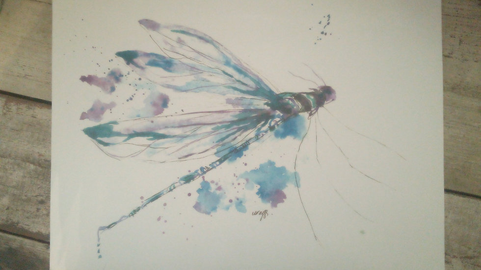 Dragonfly prints