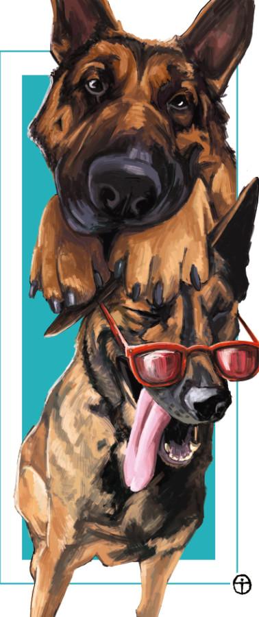 Retrato mascotas