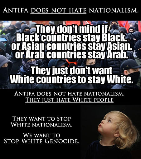 Antifa does not hate nationalism copy.jp