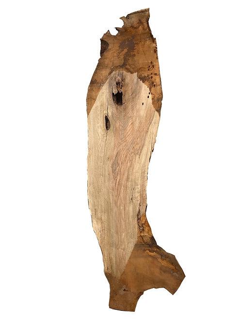 BAUMSCHEIBE NUSSBAUM TISCHPLATTE 395cm