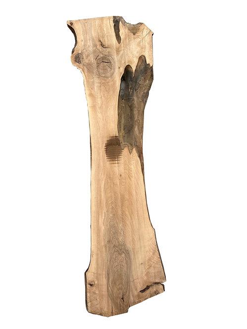 BAUMSCHEIBE NUSSBAUM TISCHPLATTE 310cm
