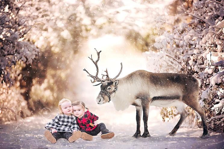 Winter_04_for_web.jpg