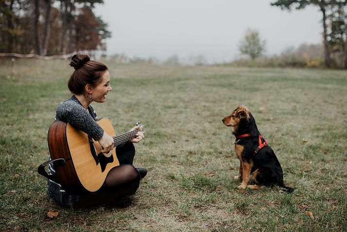 Trauungsmusik Wien