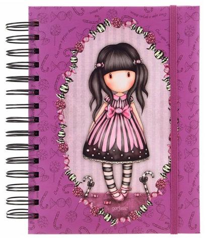 Organizational Notebook