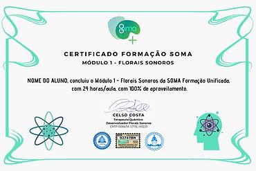 Certificados SOMA.png