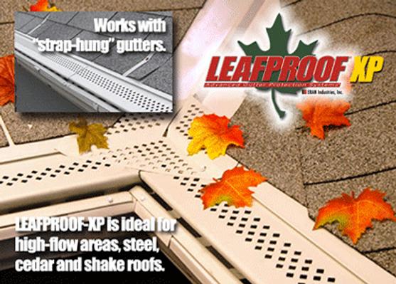 Leaf proof_edited.png