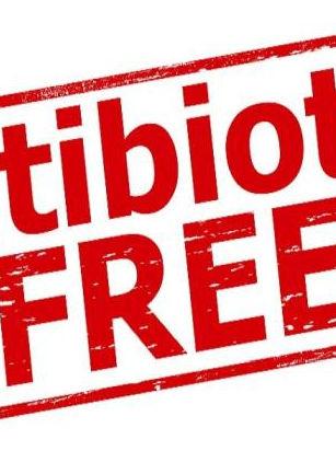 Antibiotic-free.jpg
