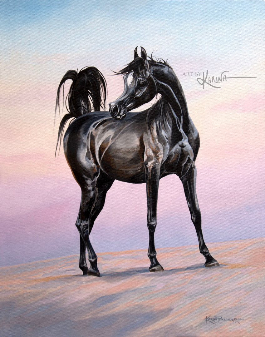 First Light - Arabian horse oil painting by Karina Peacemaker