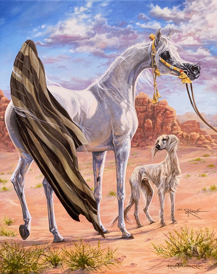 Of the Cloak - Arabian horse oil painting by Karina Peacemaker