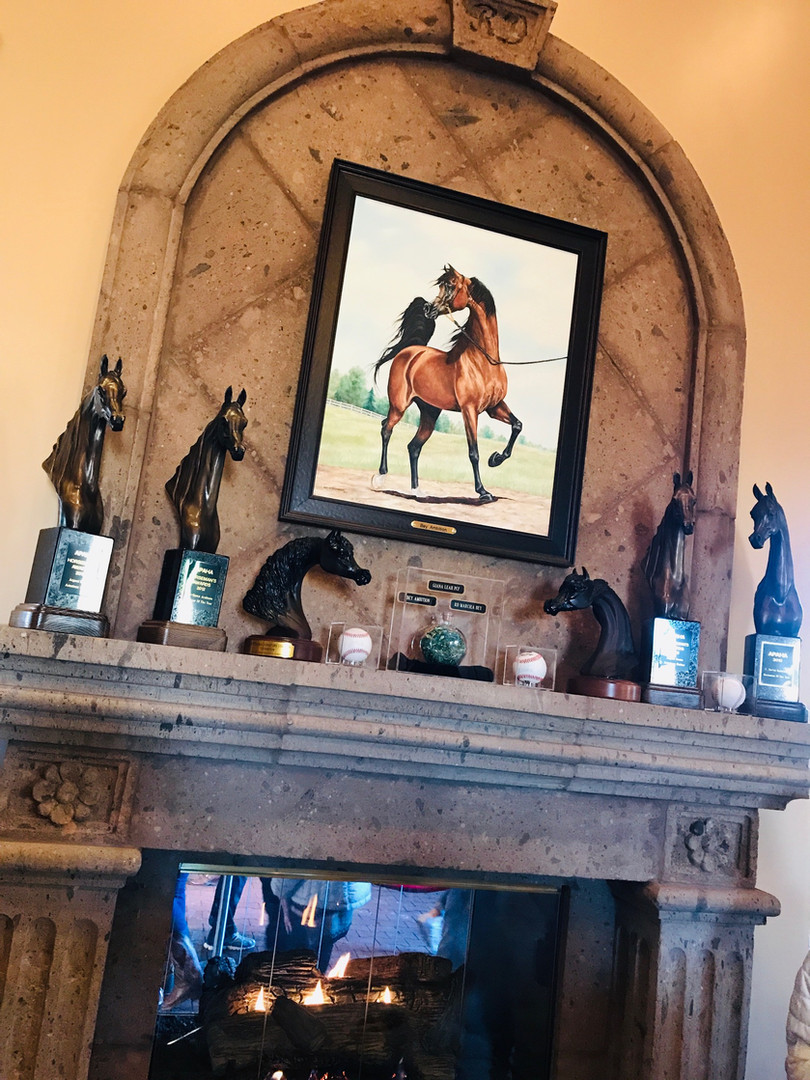 Bey Ambition - Arabian horse oil painting by Karina Peacemaker