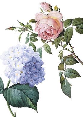 Fleurs Brochure-page-008.jpg