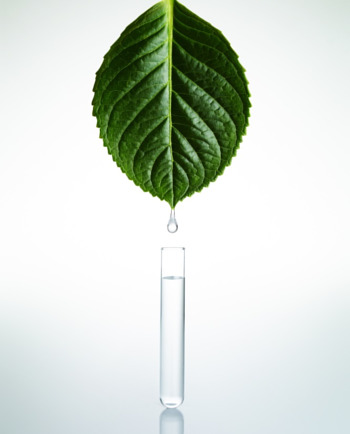 Plant Biognosis